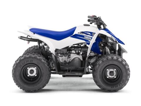 2017 Yamaha YFZ50 in Manheim, Pennsylvania