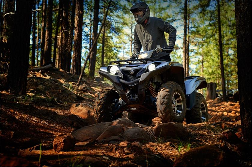 2017 Yamaha Grizzly EPS SE in Clearwater, Florida