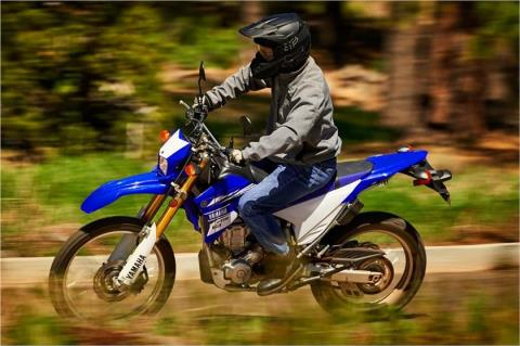 2017 Yamaha WR250R in Johnson Creek, Wisconsin