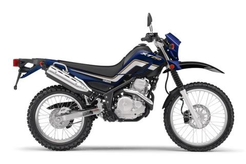 2017 Yamaha XT250 in Hendersonville, North Carolina