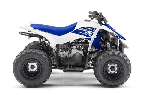 2018 Yamaha YFZ50 in Santa Maria, California
