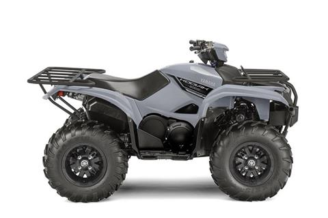 2018 Yamaha Kodiak 700 EPS in Orlando, Florida